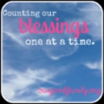 Blessings in the Mess – Counting Blessings Link Up!