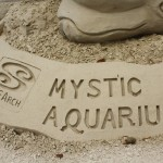 Our Top Fun Activities at Mystic Aquarium!