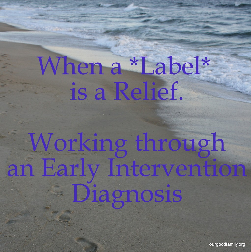 When a Label is a Relief - Working Through an Early Intervention Diagnosis