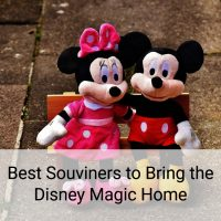 Best Souveniers to Bring the Disney Magic Home