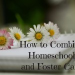 Combining Homeschool and Foster Care
