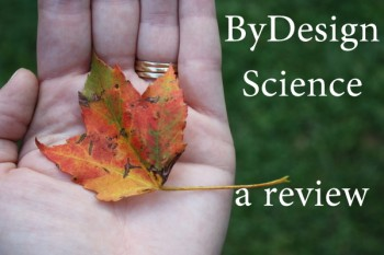 By Design Science  A Review