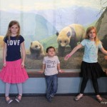 Field Trip Friday – The Academy of Natural Sciences