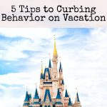 5 Tips to Curbing Behavior on Vacation