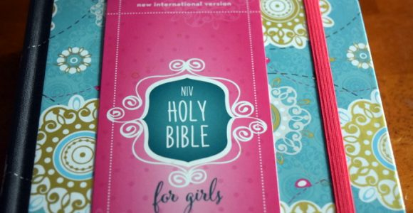 Introducing Sophie's First Grown Up Bible