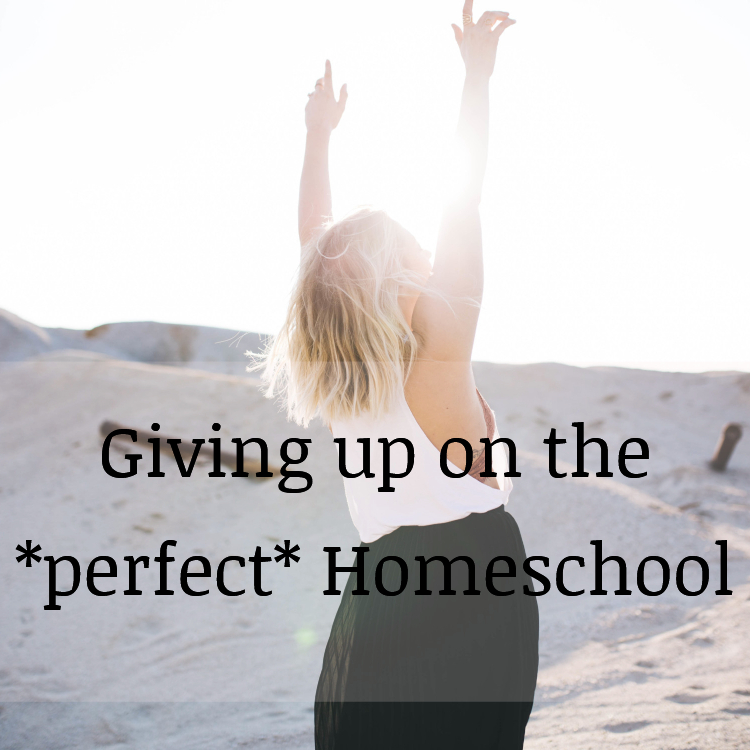 Giving Up on the perfect homeschool