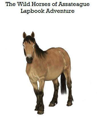 Wild Horses of Assateague Island Lapbook Download