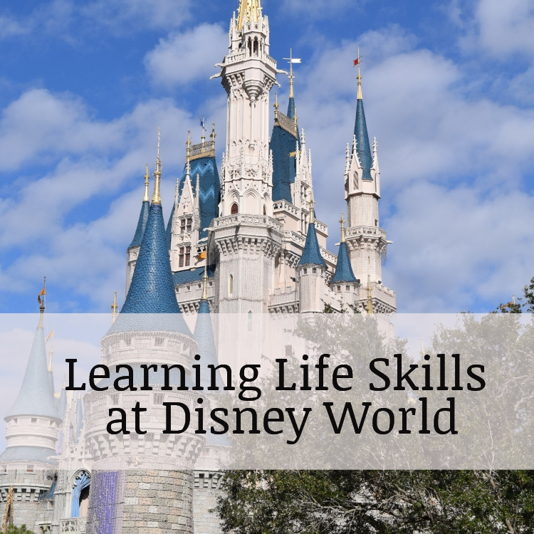 Perfecting Life Skills on the road to Disney World and other travels